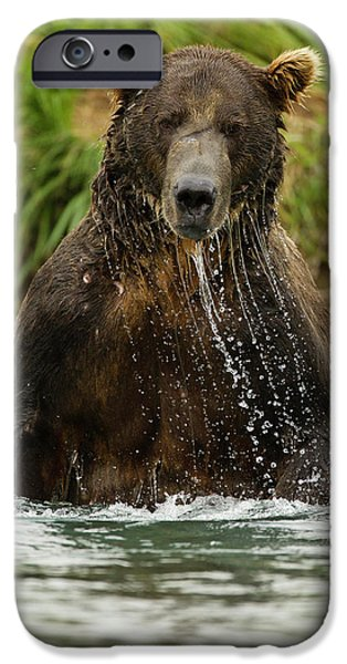 North America, Usa, Sw Alaska IPhone Case by Joe and Mary Ann Mcdonald