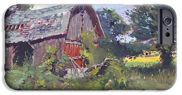 Old Barns  IPhone Case by Ylli Haruni