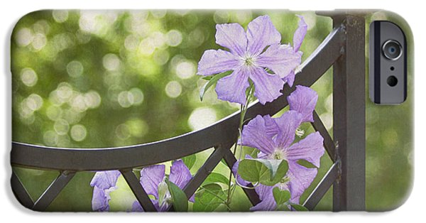 On The Fence IPhone Case by Kim Hojnacki