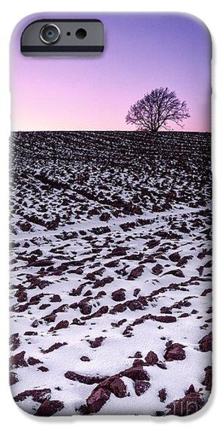 One More Tree IPhone Case by John Farnan