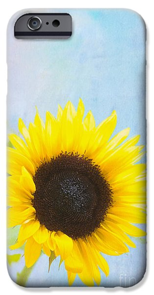 One Sunflower IPhone Case by Kay Pickens