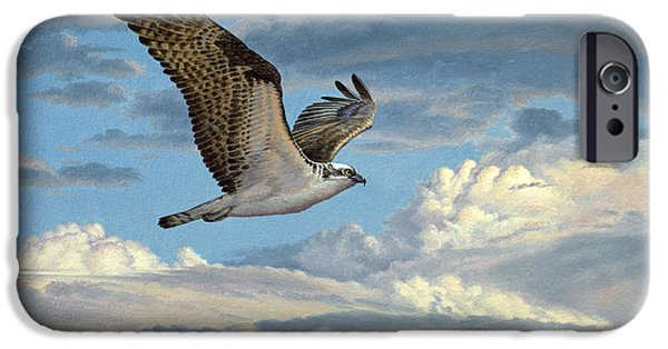 Osprey In The Clouds IPhone 6s Case by Paul Krapf