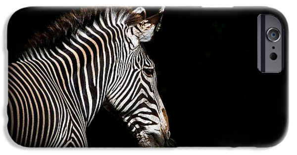 Out Of The Shadows IPhone Case by Scott Mullin