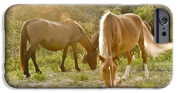 Outer Banks Wild Horses IPhone Case by Mike Baltzgar