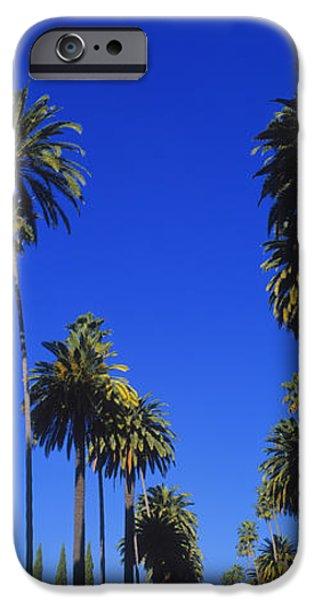 Palm Trees Along A Road, Beverly Hills IPhone 6s Case by Panoramic Images