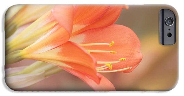 Pastels IPhone Case by Kim Hojnacki