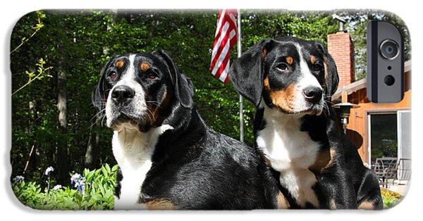 Patriotic Pet IPhone Case by Aaron Aldrich