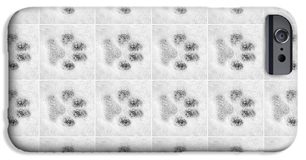 Paw Prints In The Snow IPhone Case by Natalie Kinnear