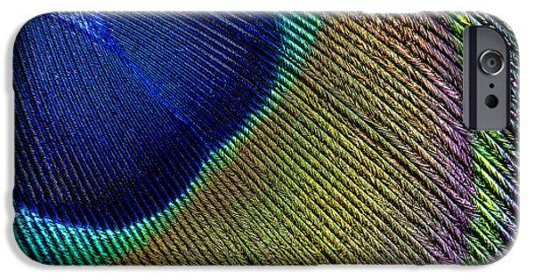 Peacock Feather Macro IPhone Case by Adam Romanowicz