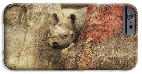 Peek A Boo Rhino IPhone 6s Case by Thomas Woolworth