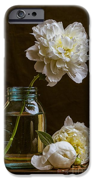 Remembrance IPhone Case by Edward Fielding