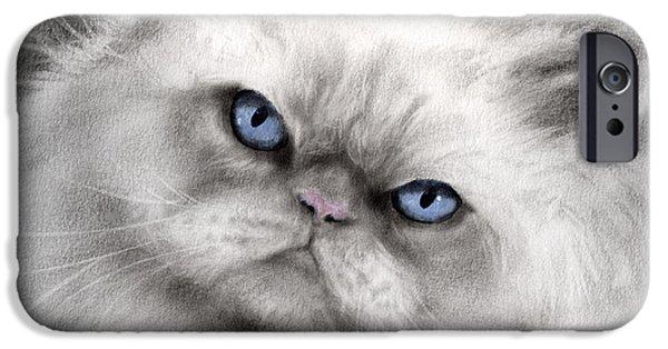 Persian Cat With Blue Eyes IPhone Case by Svetlana Novikova
