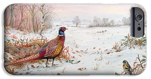 Pheasant And Bramblefinch In The Snow IPhone 6s Case by Carl Donner