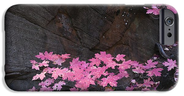 Pink Fall Colors In Sedona Arizona IPhone Case by Dave Dilli