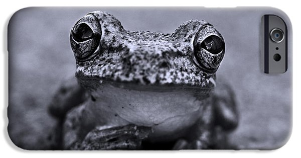 Pondering Frog Bw IPhone 6s Case by Laura Fasulo