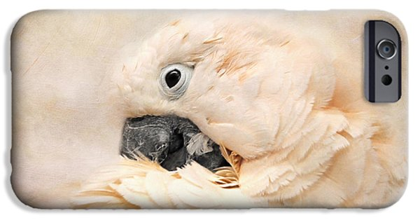 Preening IPhone 6s Case by Jai Johnson