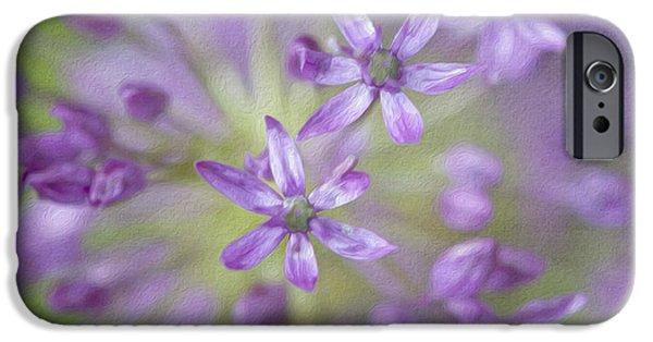 Purple Allium Flower IPhone 6s Case by Juli Scalzi