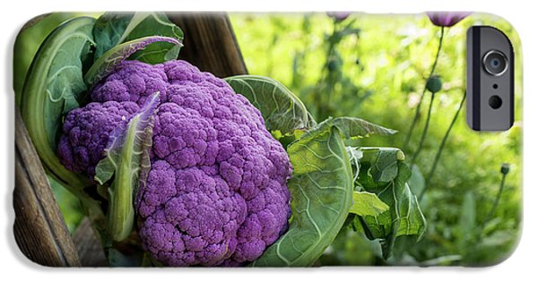 Purple Cauliflower IPhone 6s Case by Aberration Films Ltd