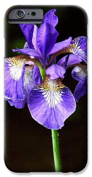 Purple Iris IPhone Case by Adam Romanowicz