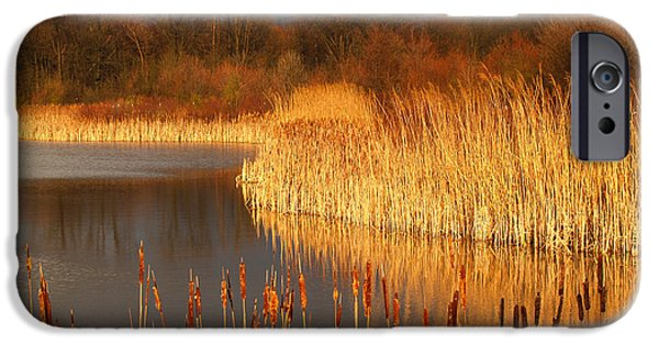 Quakertown Marsh Before Spring Storm IPhone Case by Anna Lisa Yoder