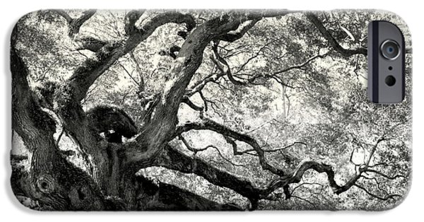 Reaching For Heaven IPhone Case by Karen Wiles