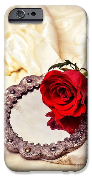 Red Rose IPhone Case by Amanda And Christopher Elwell