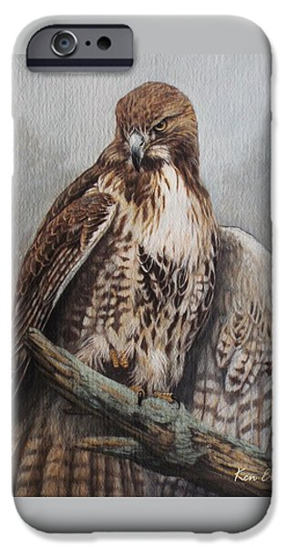 Red Tail Hawk IPhone Case by Ken Everett