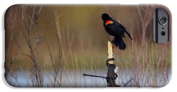 Red Winged Blackbird 2 IPhone 6s Case by Ernie Echols