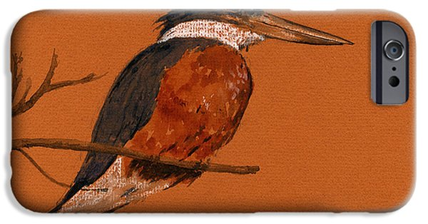 Ringed Kingfisher Bird IPhone 6s Case by Juan  Bosco