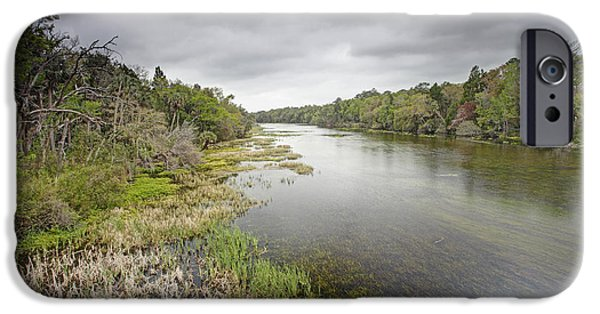 River In Ocala National Forest Florida IPhone Case by Scott  Leslie