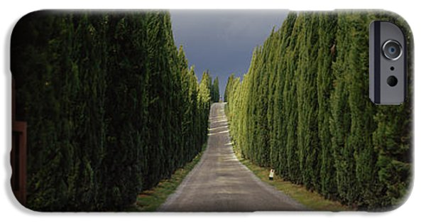 Road, Tuscany, Italy IPhone Case by Panoramic Images
