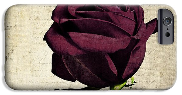 Rose En Variation - S11bt10b IPhone Case by Variance Collections