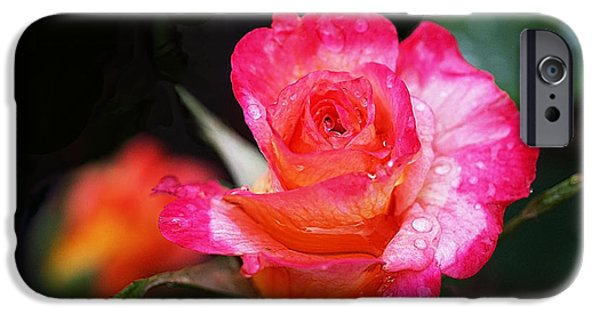 Rose Mardi Gras IPhone 6s Case by Rona Black