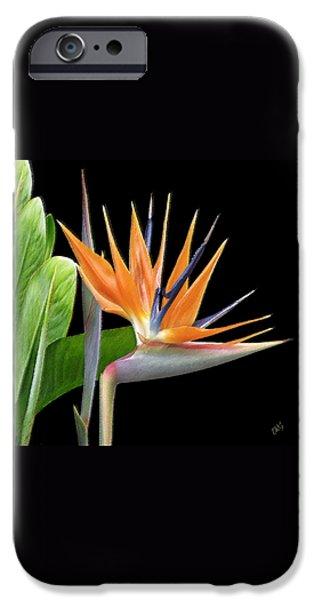 Royal Beauty I - Bird Of Paradise IPhone Case by Ben and Raisa Gertsberg