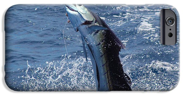 Sailfish Release IPhone Case by Carey Chen