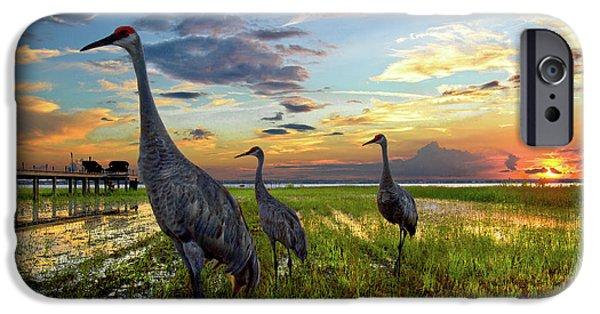 Sandhill Sunset IPhone 6s Case by Debra and Dave Vanderlaan