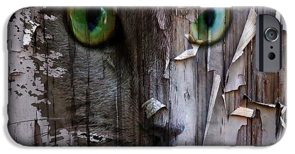 Scaring Fence IPhone Case by Yury Malkov