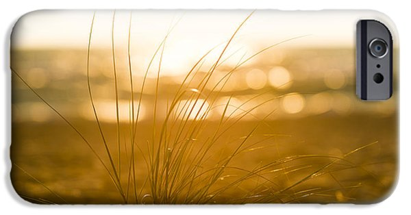 Sea Oats Sunset IPhone Case by Sebastian Musial