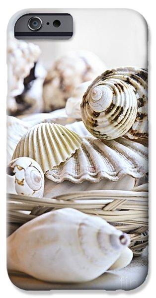 Seashells IPhone Case by Elena Elisseeva