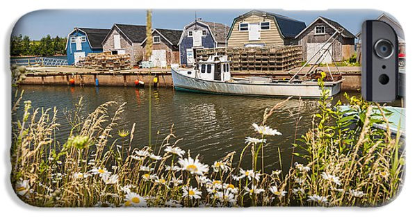 Seaside View Of Prince Edward Island IPhone Case by Elena Elisseeva