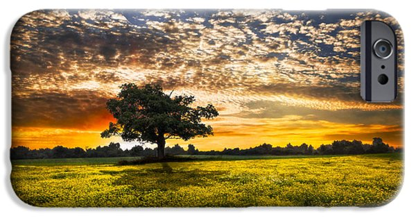 Shadows At Sunset IPhone Case by Debra and Dave Vanderlaan
