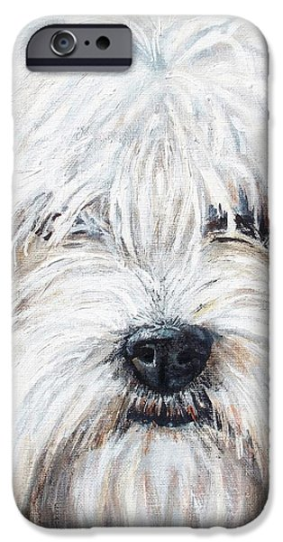 Shaggy Dog IPhone Case by Shana Rowe Jackson