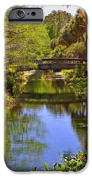 Silver Springs Florida IPhone Case by Christine Till