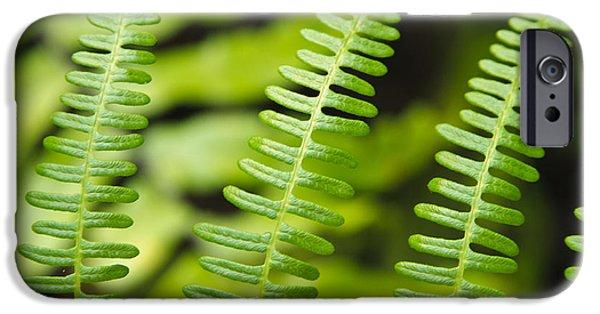 Simple Green IPhone Case by Adam Romanowicz