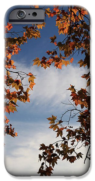 Skyward IPhone 6s Case by Laurie Search