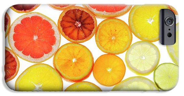 Slices Of Citrus Fruit IPhone 6s Case by Cordelia Molloy