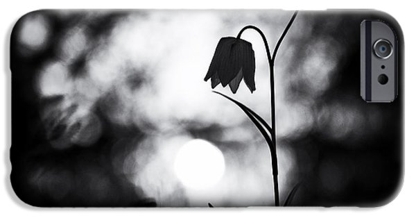 Snakes Head Fritillary Monochrome IPhone Case by Tim Gainey