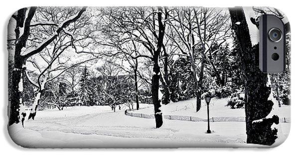 Snow Scene  IPhone Case by Madeline Ellis
