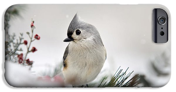 Snow White Tufted Titmouse IPhone 6s Case by Christina Rollo