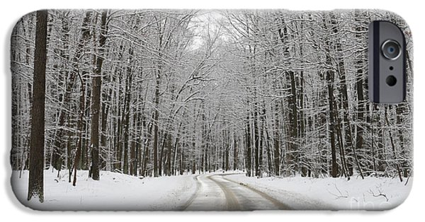 Snowy Road In Oak Openings 7058 IPhone 6s Case by Jack Schultz